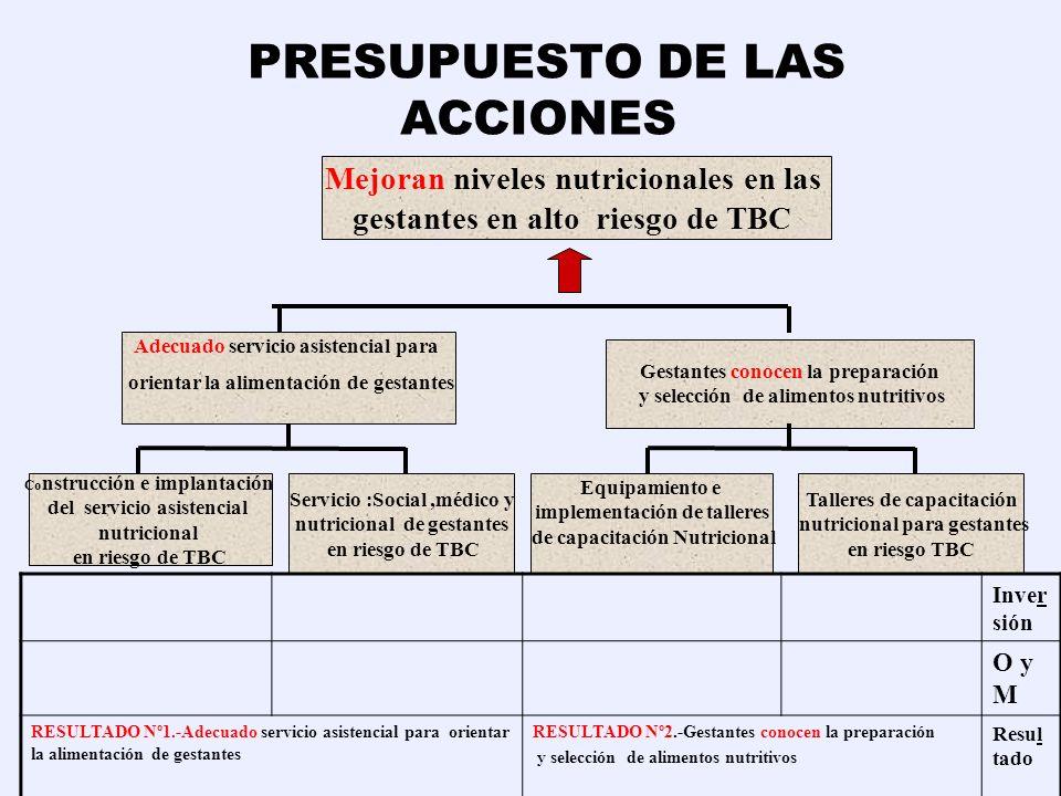 PRESUPUESTO DE LAS ACCIONES