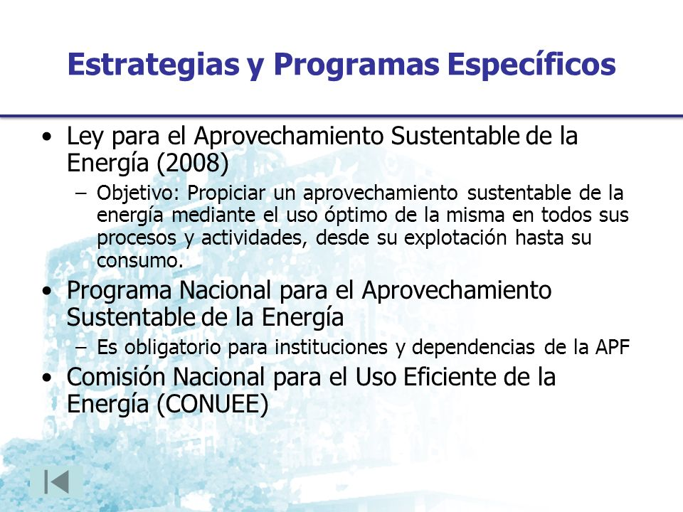 Estrategias y Programas Específicos