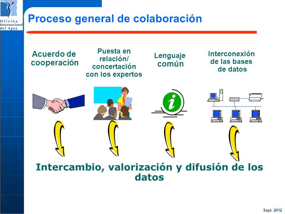 Proceso general de colaboración