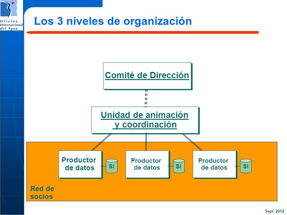 Los 3 niveles de organización
