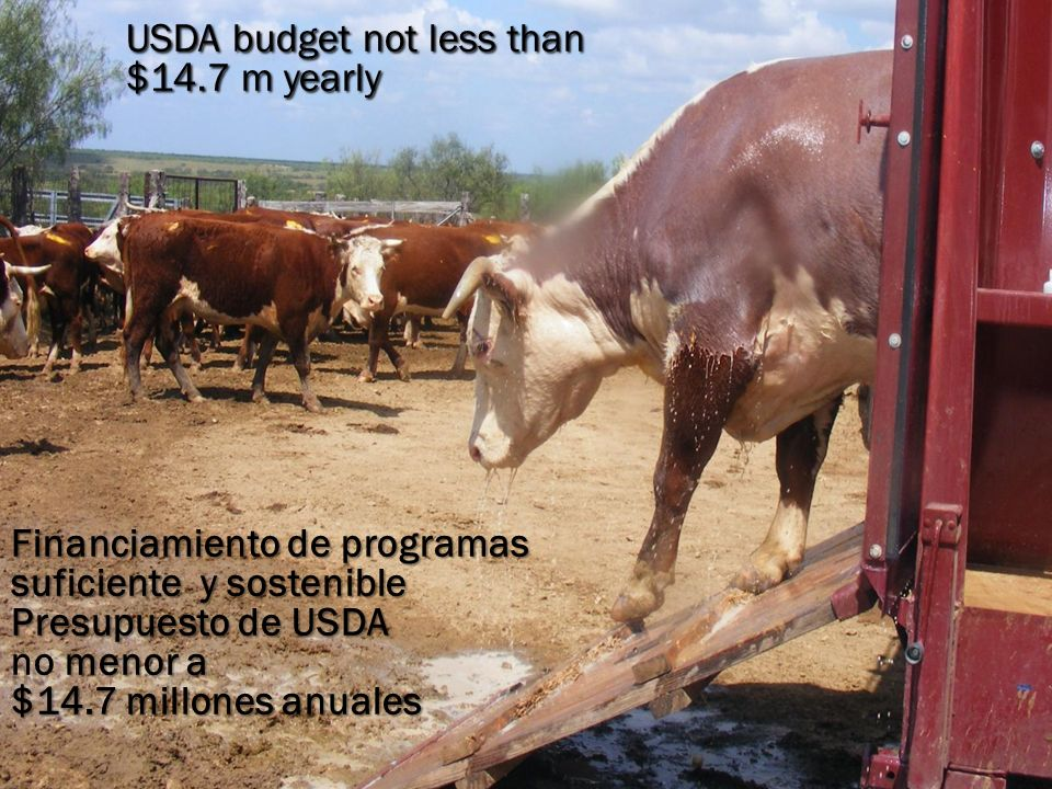 USDA budget not less than