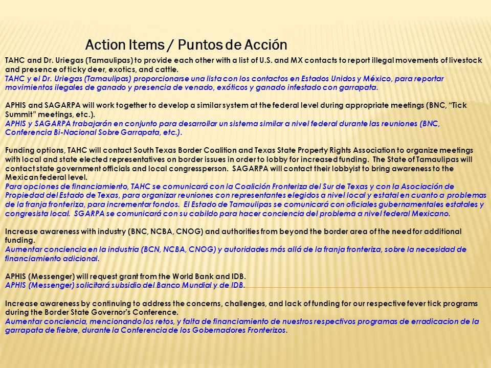 Action Items / Puntos de Acción