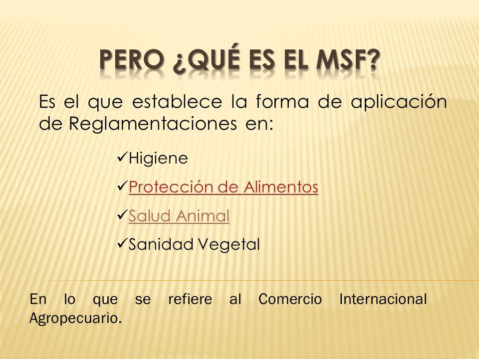 Pero ¿Qué es el MSF Es el que establece la forma de aplicación de Reglamentaciones en: Higiene. Protección de Alimentos.