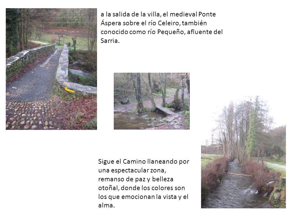 a la salida de la villa, el medieval Ponte Áspera sobre el río Celeiro, también conocido como río Pequeño, afluente del Sarria.