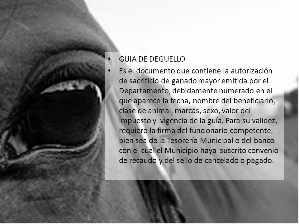 GUIA DE DEGUELLO