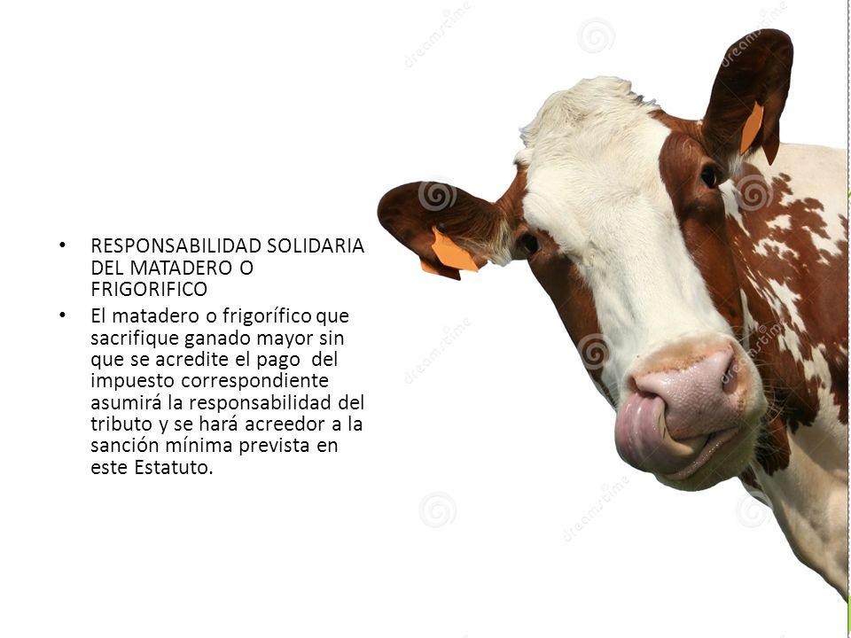 RESPONSABILIDAD SOLIDARIA DEL MATADERO O FRIGORIFICO