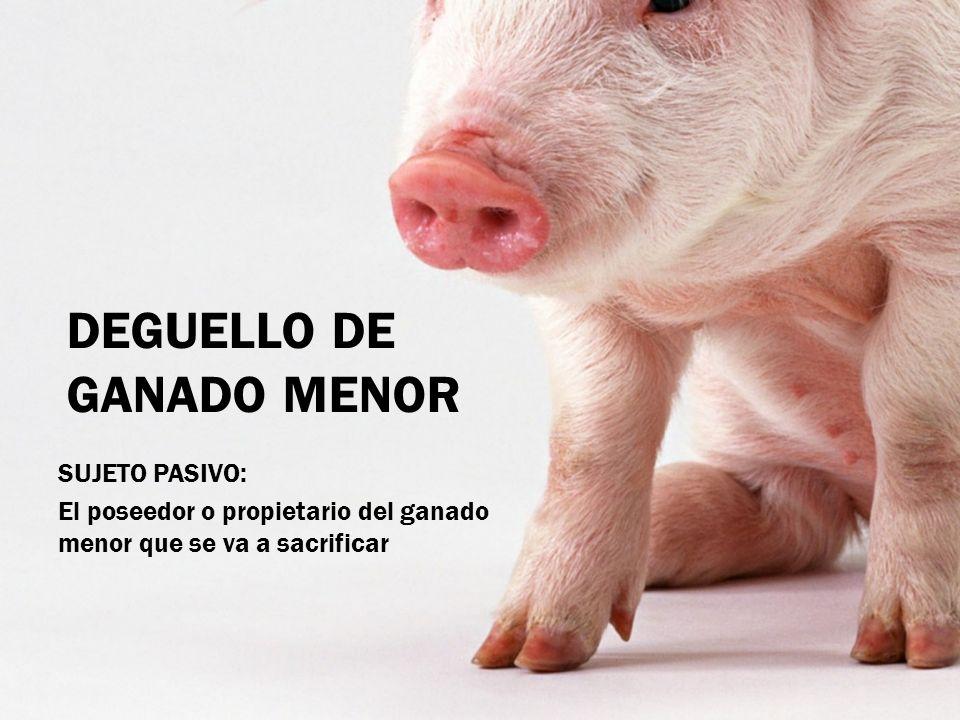 DEGUELLO DE GANADO MENOR