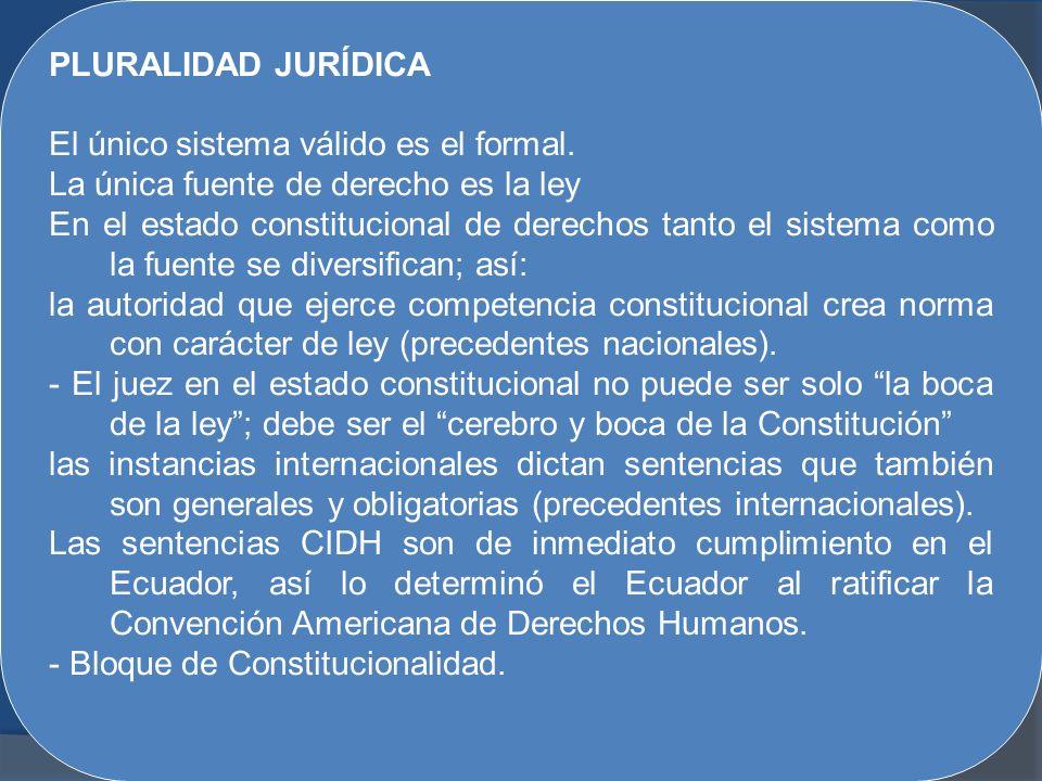 PLURALIDAD JURÍDICA El único sistema válido es el formal. La única fuente de derecho es la ley.