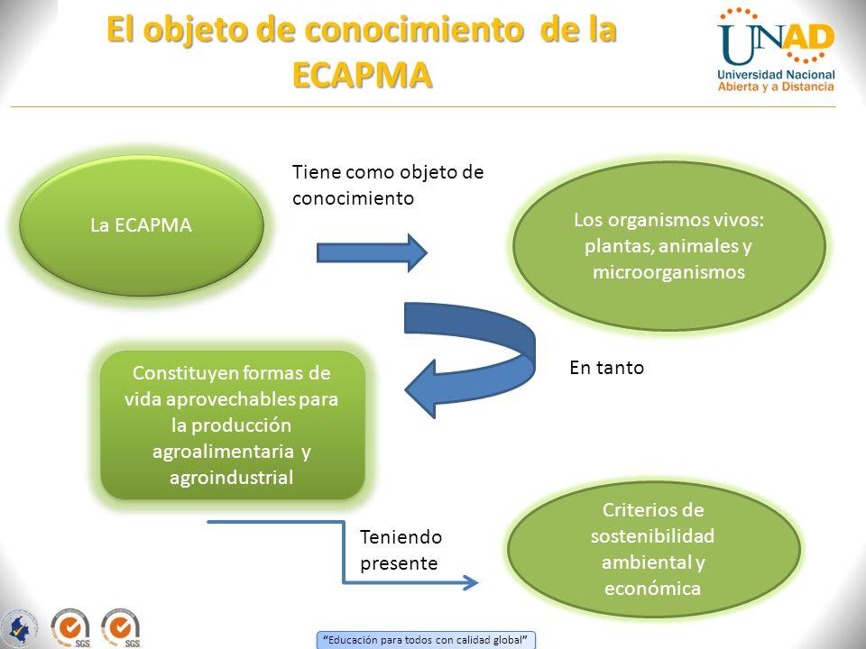 El objeto de conocimiento de la ECAPMA