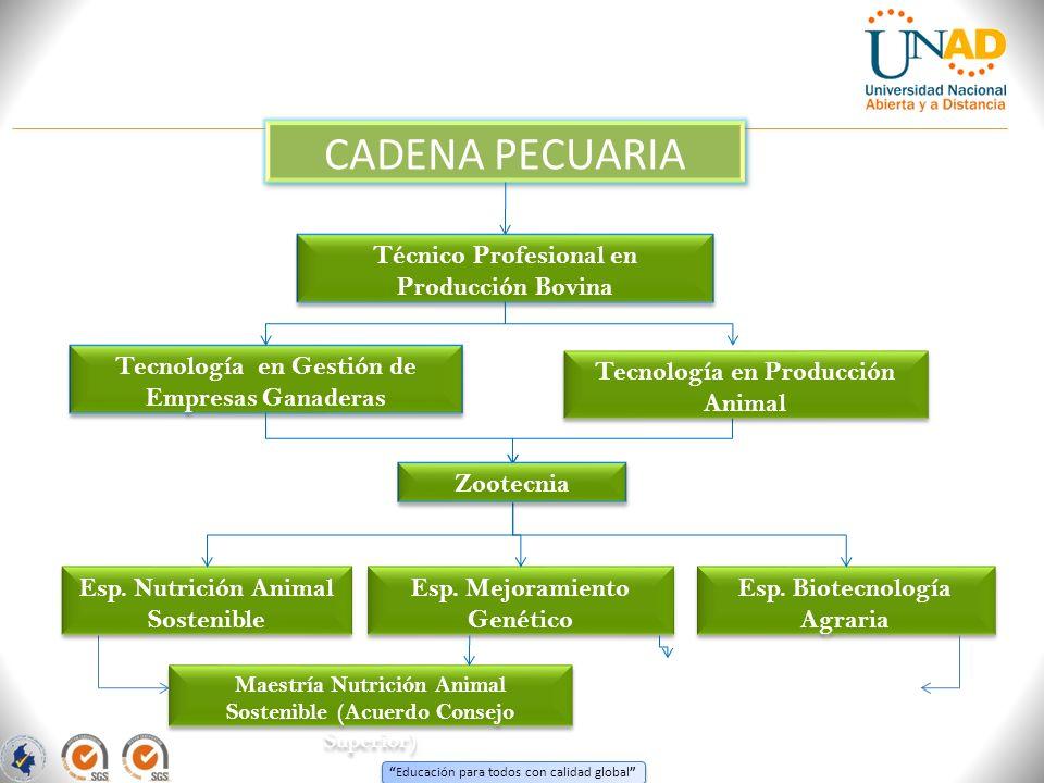 CADENA PECUARIA Técnico Profesional en Producción Bovina