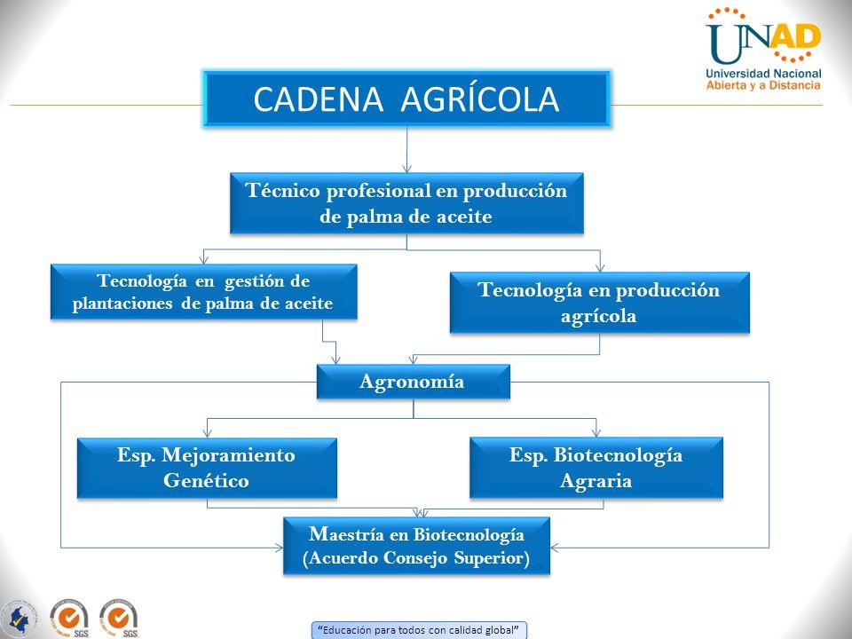 CADENA AGRÍCOLA Técnico profesional en producción de palma de aceite