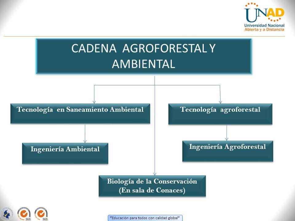 CADENA AGROFORESTAL Y AMBIENTAL