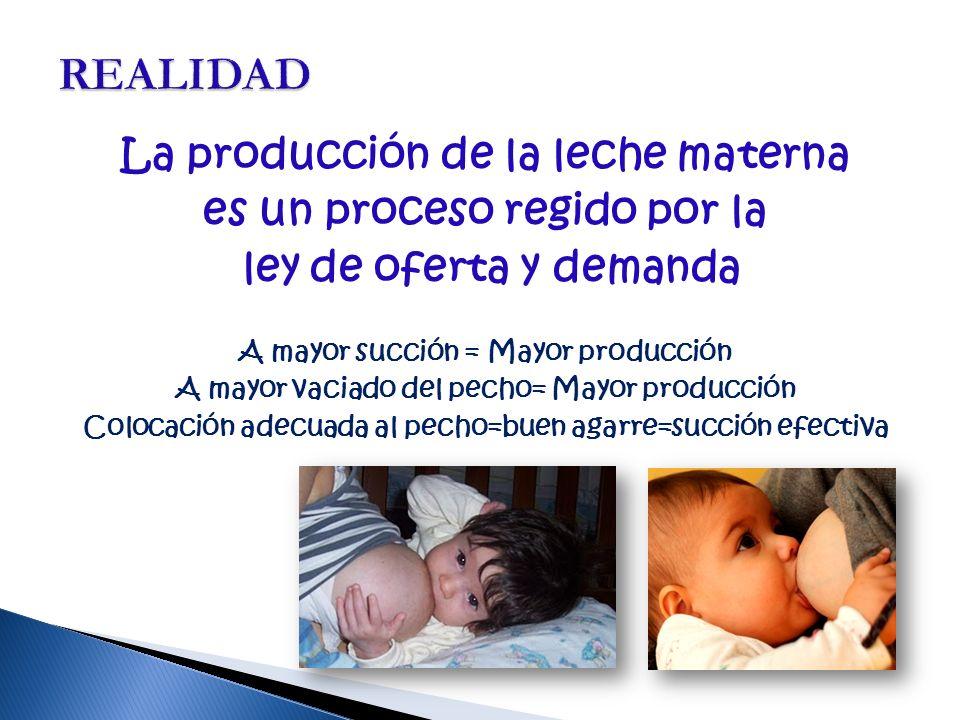 REALIDAD La producción de la leche materna es un proceso regido por la