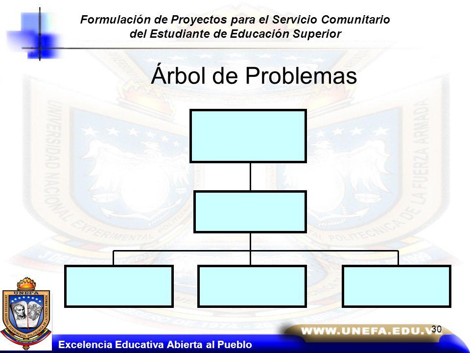 Formulación de Proyectos para el Servicio Comunitario del Estudiante de Educación Superior