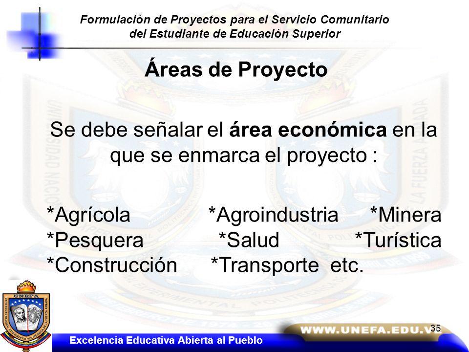 Se debe señalar el área económica en la que se enmarca el proyecto :