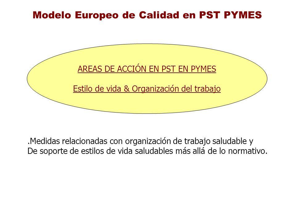 Modelo Europeo de Calidad en PST PYMES