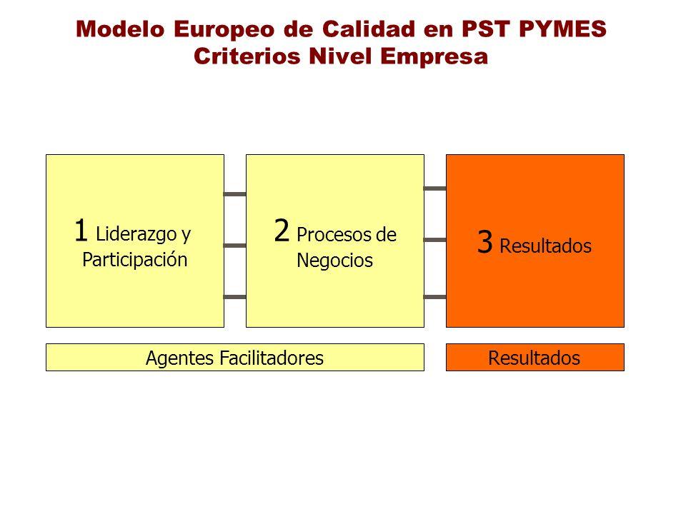 Modelo Europeo de Calidad en PST PYMES Criterios Nivel Empresa