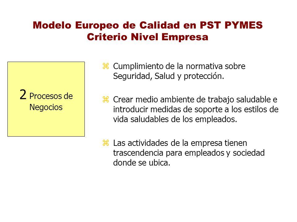 Modelo Europeo de Calidad en PST PYMES Criterio Nivel Empresa