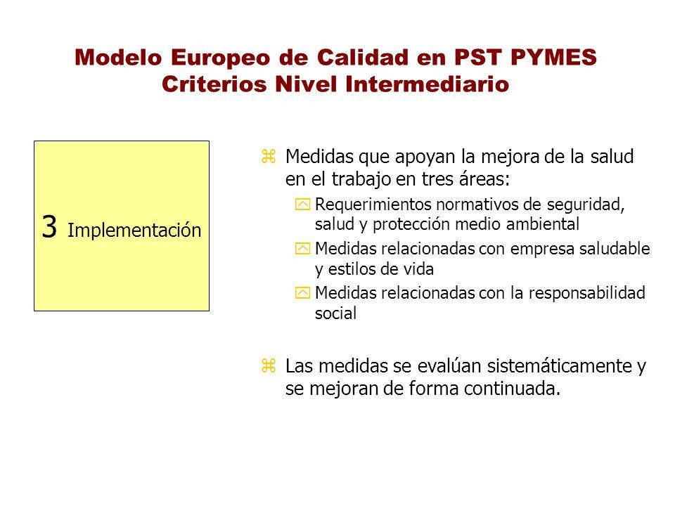 Modelo Europeo de Calidad en PST PYMES Criterios Nivel Intermediario