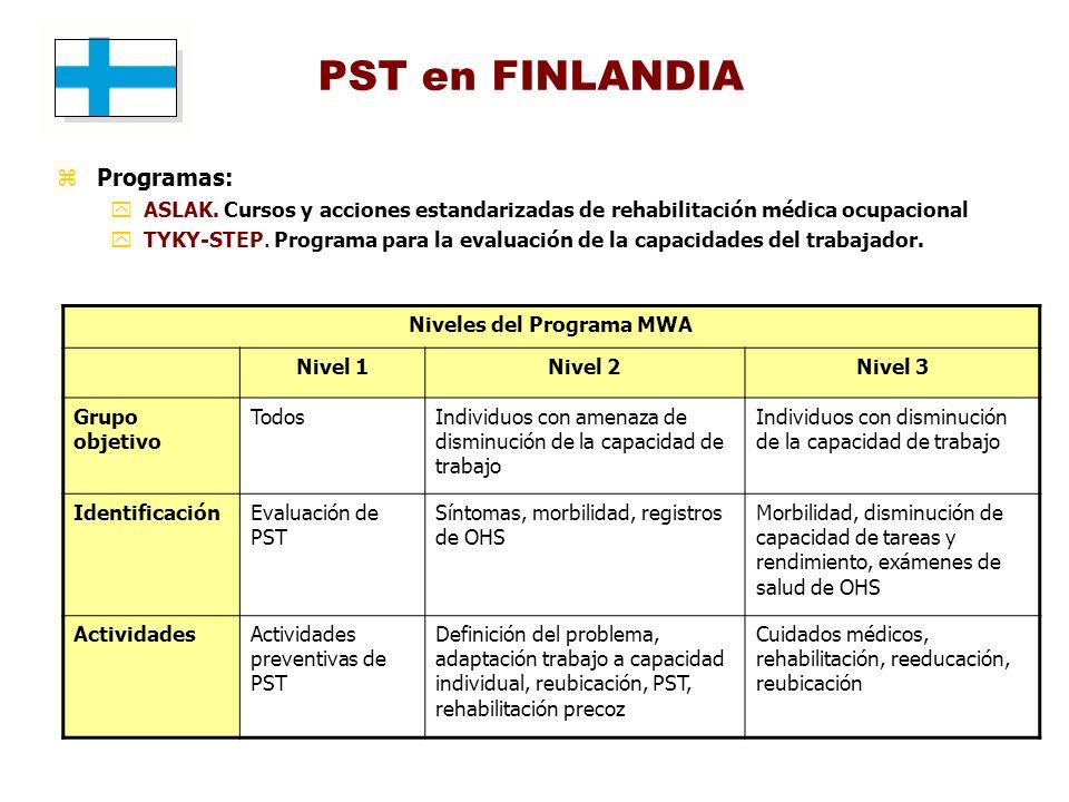 Niveles del Programa MWA