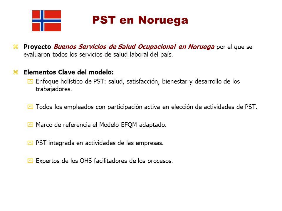 PST en Noruega Proyecto Buenos Servicios de Salud Ocupacional en Noruega por el que se evaluaron todos los servicios de salud laboral del país.