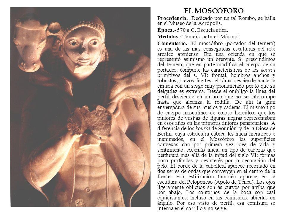 EL MOSCÓFORO Procedencia.- Dedicado por un tal Rombo, se halla en el Museo de la Acrópolis. Época.- 570 a.C. Escuela ática.