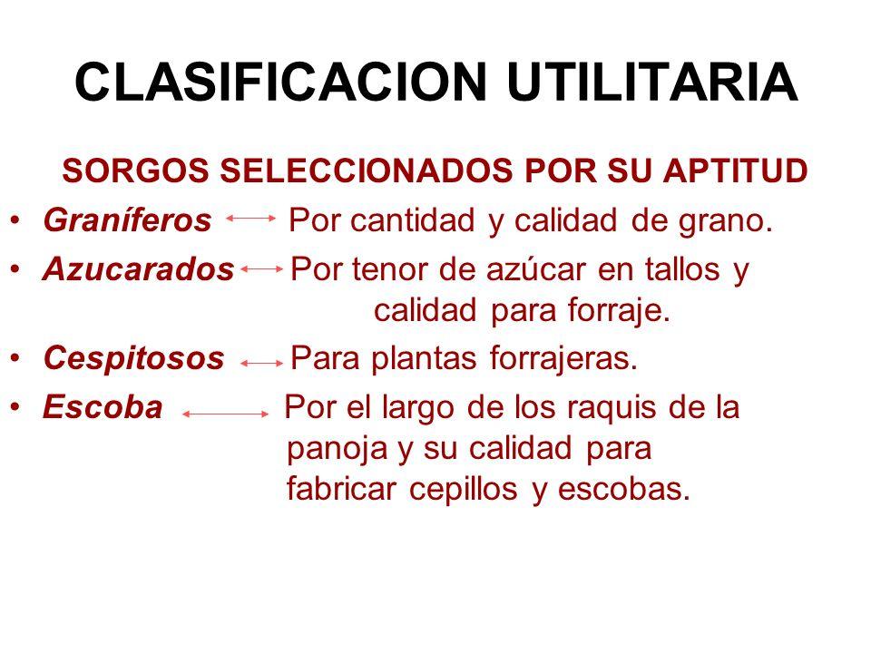 CLASIFICACION UTILITARIA