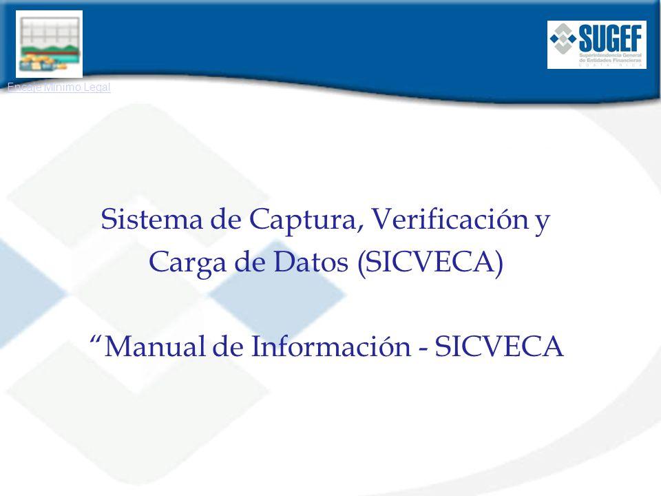 Sistema de Captura, Verificación y Carga de Datos (SICVECA)