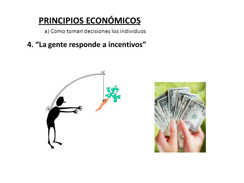 PRINCIPIOS ECONÓMICOS