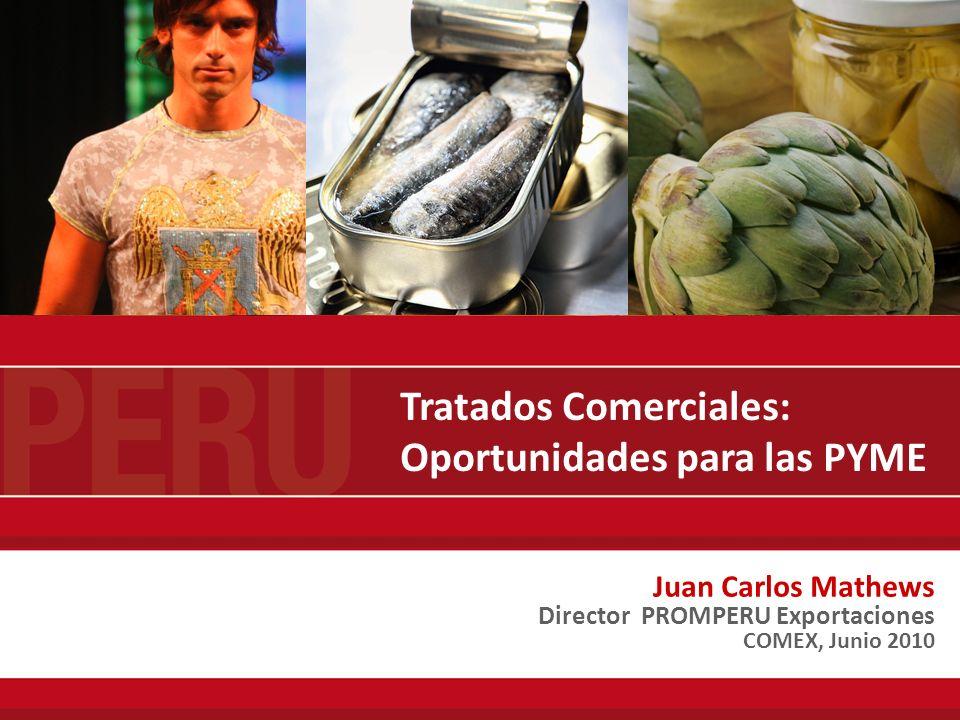 Tratados Comerciales: Oportunidades para las PYME