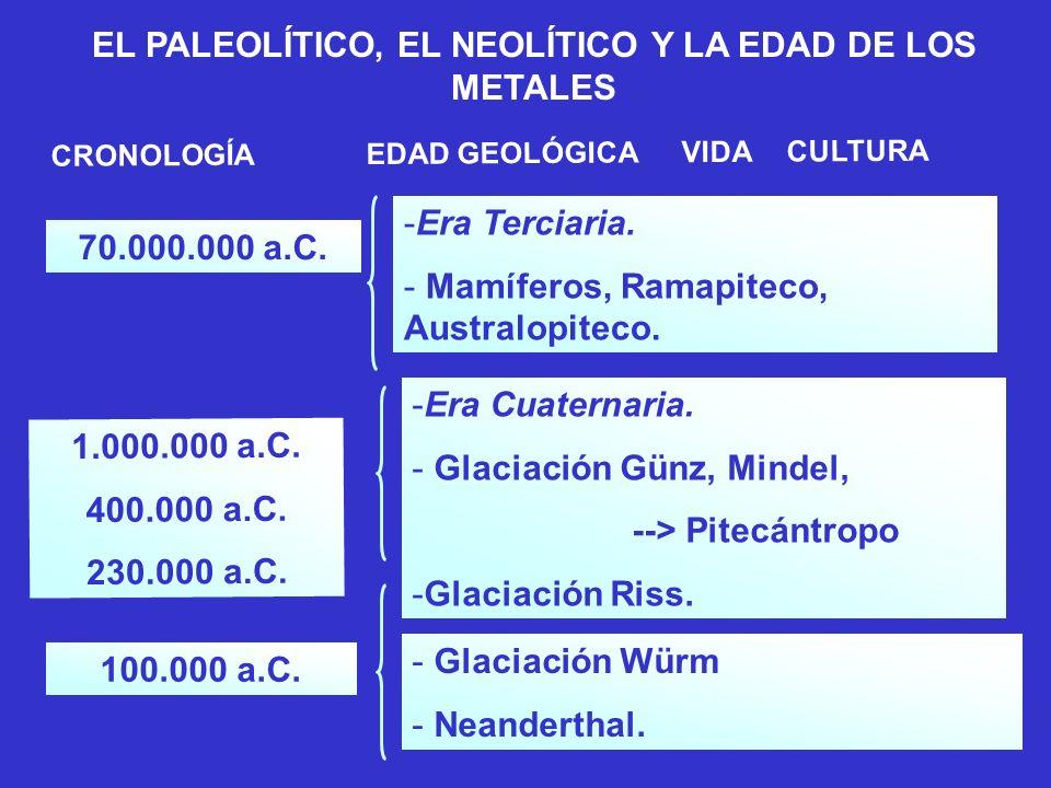 EL PALEOLÍTICO, EL NEOLÍTICO Y LA EDAD DE LOS METALES