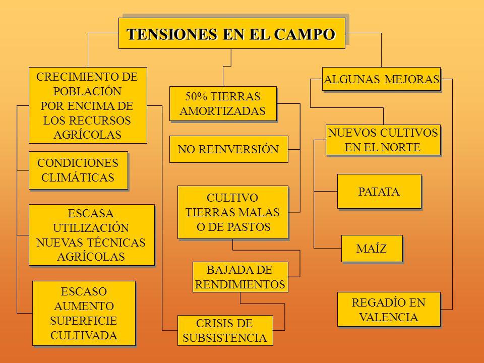 TENSIONES EN EL CAMPO CRECIMIENTO DE ALGUNAS MEJORAS POBLACIÓN