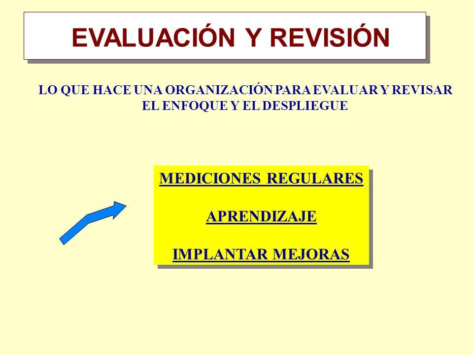 EVALUACIÓN Y REVISIÓN Resumen