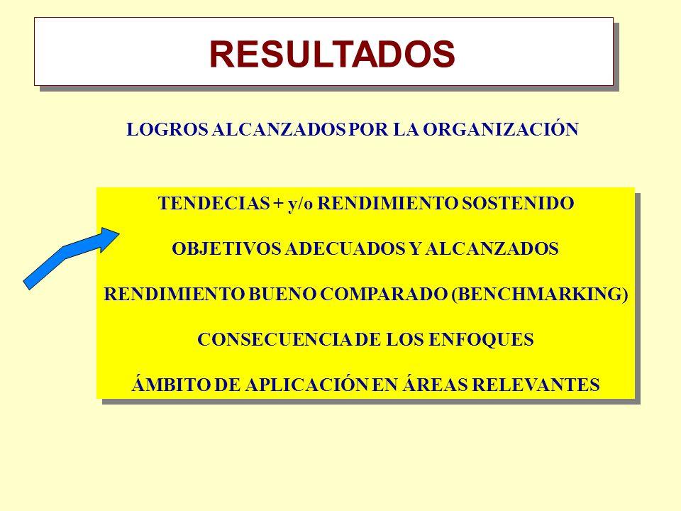 RESULTADOS Resumen LOGROS ALCANZADOS POR LA ORGANIZACIÓN