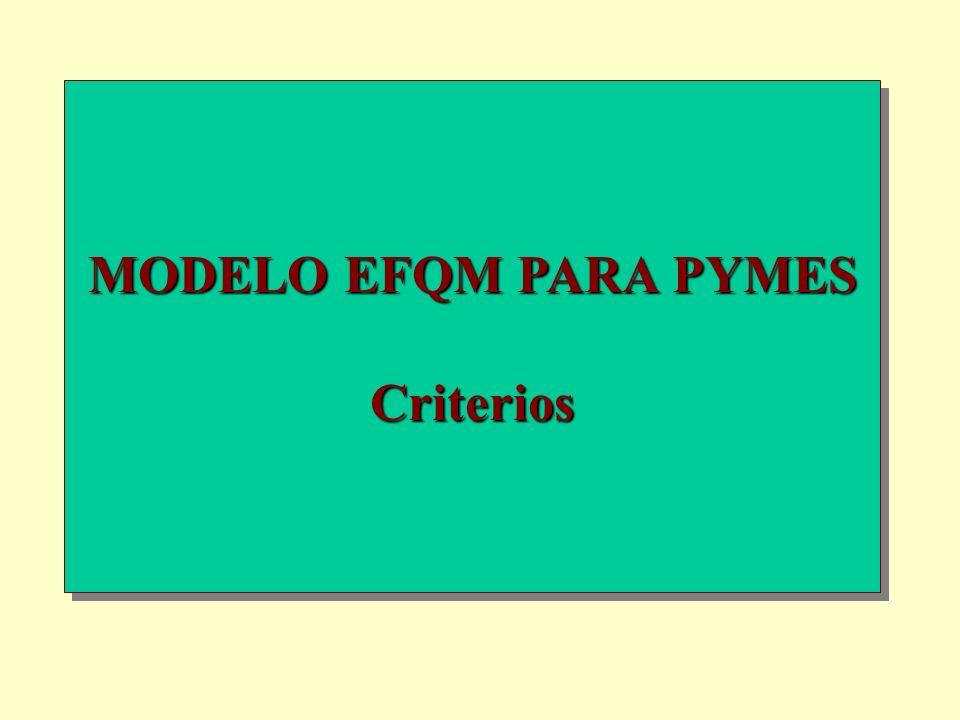 MODELO EFQM PARA PYMES Criterios