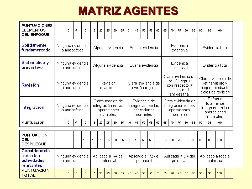 MATRIZ AGENTES