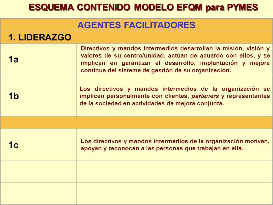 ESQUEMA CONTENIDO MODELO EFQM para PYMES