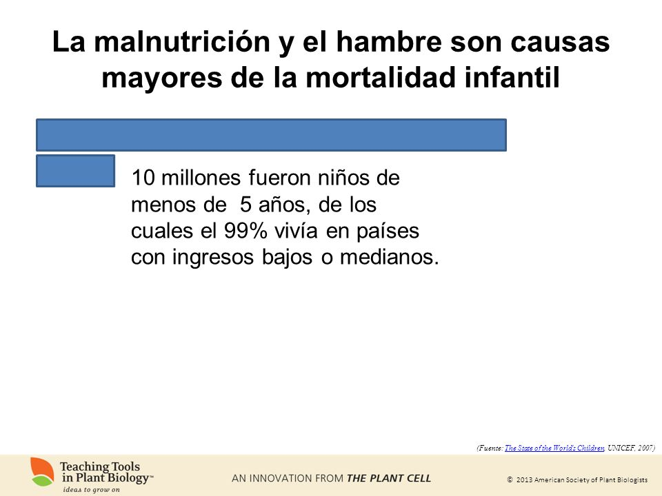 La malnutrición y el hambre son causas mayores de la mortalidad infantil