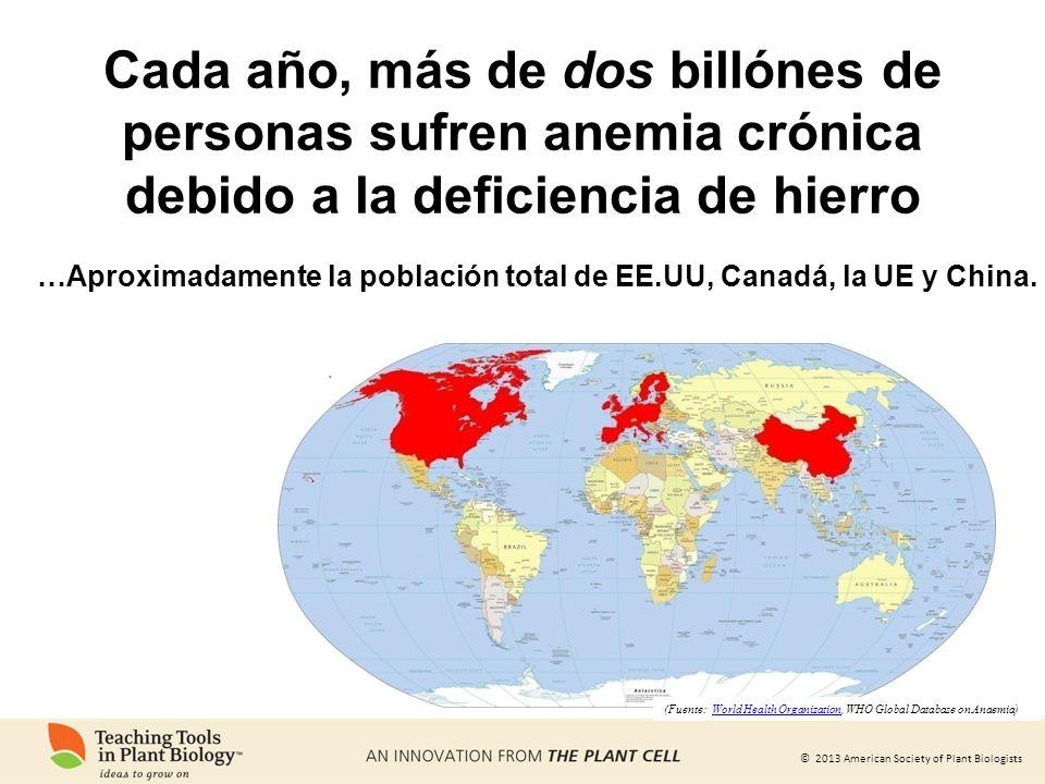 Cada año, más de dos billónes de personas sufren anemia crónica debido a la deficiencia de hierro