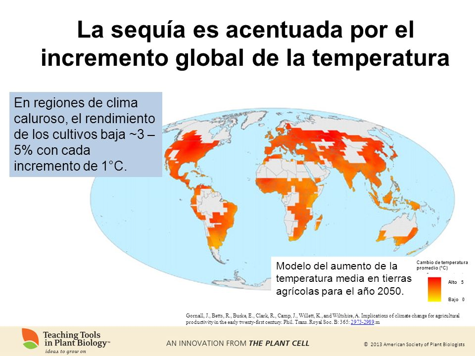 La sequía es acentuada por el incremento global de la temperatura