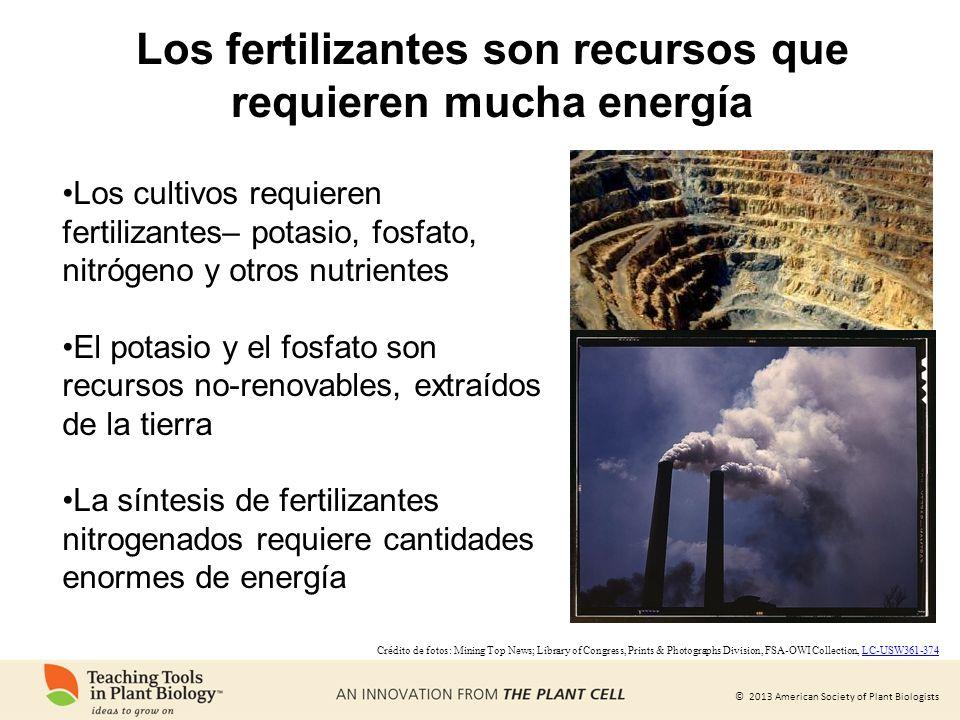 Los fertilizantes son recursos que requieren mucha energía