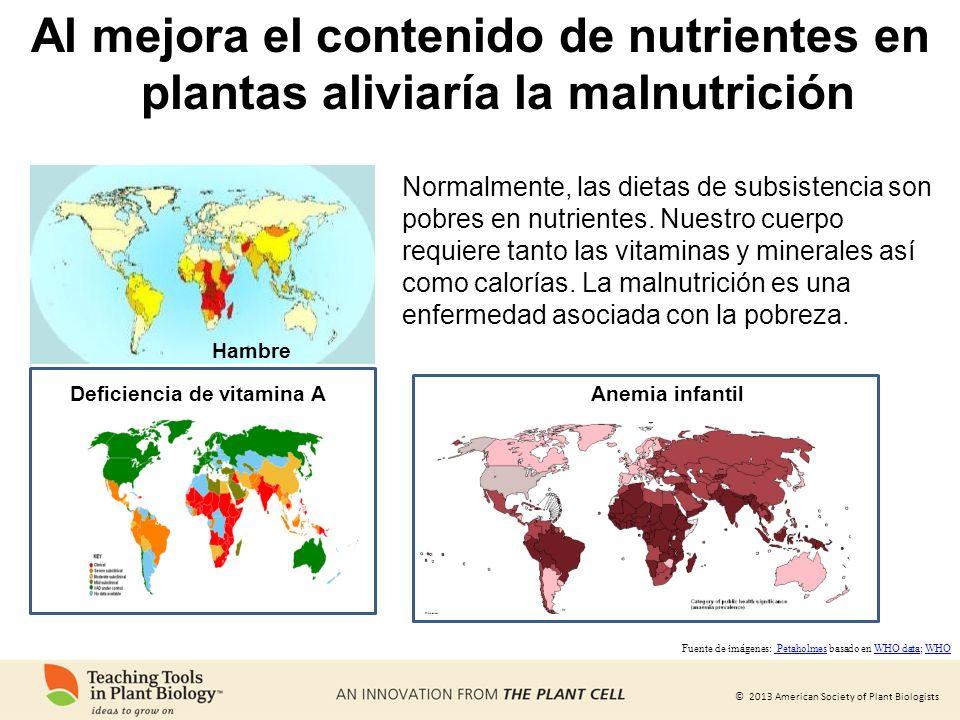 Al mejora el contenido de nutrientes en plantas aliviaría la malnutrición