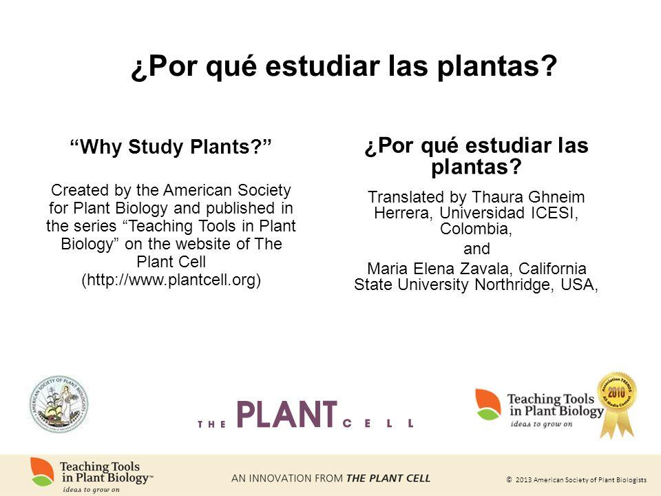 ¿Por qué estudiar las plantas ¿Por qué estudiar las plantas