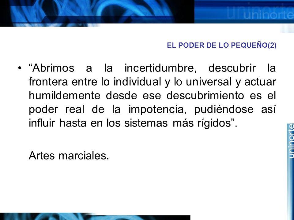 EL PODER DE LO PEQUEÑO(2)