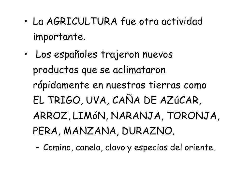 La AGRICULTURA fue otra actividad importante.