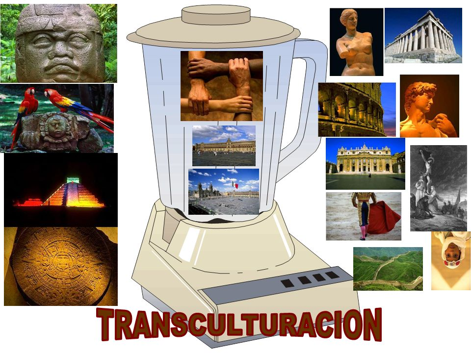 TRANSCULTURACION
