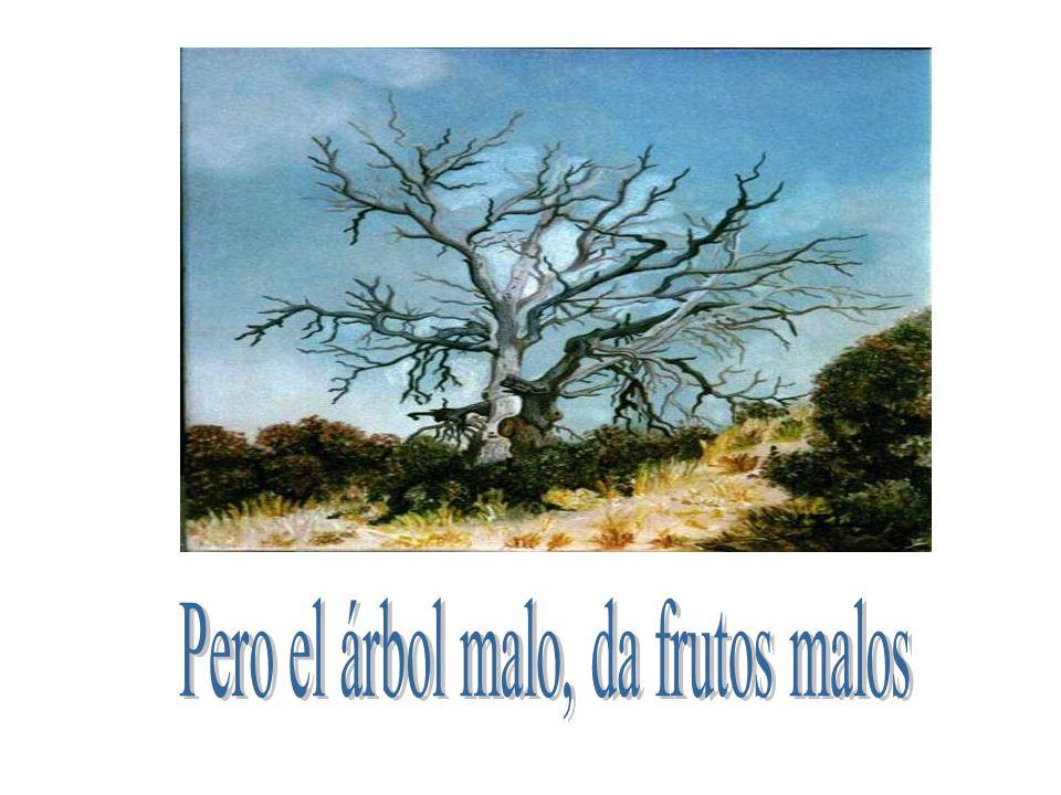 Pero el árbol malo, da frutos malos
