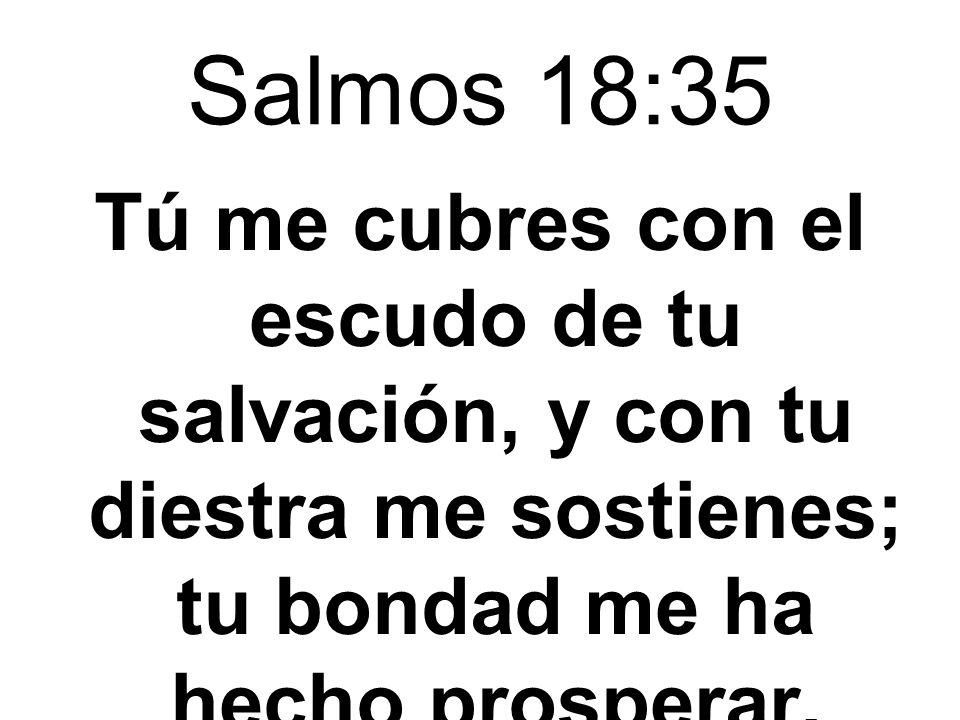 Salmos 18:35Tú me cubres con el escudo de tu salvación, y con tu diestra me sostienes; tu bondad me ha hecho prosperar.