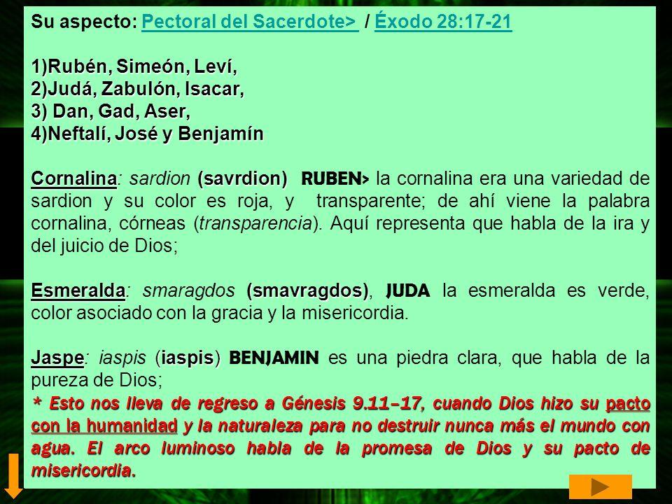 Su aspecto: Pectoral del Sacerdote> / Éxodo 28:17-21