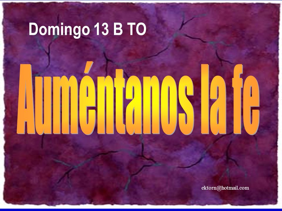 Domingo 13 B TO Auméntanos la fe ektorn@hotmail.com